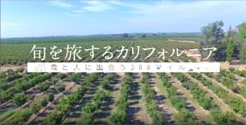 BS-TBSにて「旬を旅するカリフォルニア」放映されました!